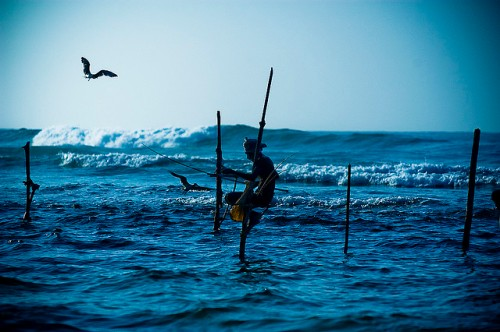 A fisherman off the coast of Sri Lanka