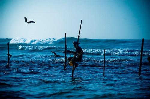 A fisherman off the coast of Sri Lanka