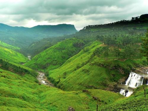 The luscious hills of Sri Lanka.
