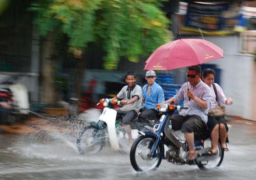 Motos in Rain